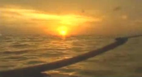 Pulau Asu8