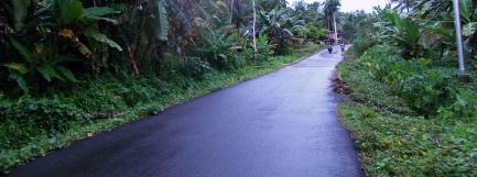 Jalan bagus (2)